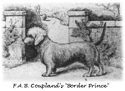 couplands-borderprince_250_t