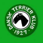 dansk-terrier-klub