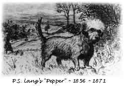 langs-pepper-s38_250_t