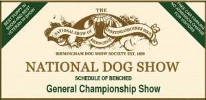 2016_National-Dog-Show, Stafford