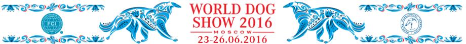 2016_WDS-Moskau2