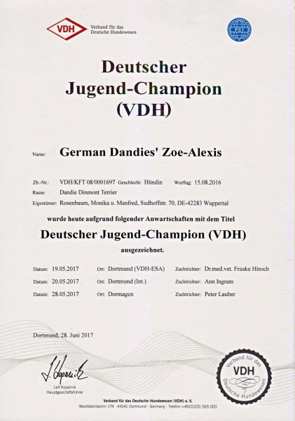 D-Jugendchampion-VDH